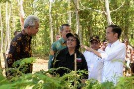Presiden Jokowi ajak masyarakat pulihkan daerah aliran sungai