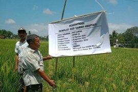 Mukomuko tetapkan penyuluh pertanian swadaya akhir Februari