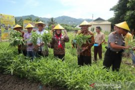 Pramuka dan Dinas Pangan Gorontalo kampanye keamanan pangan di sekolah