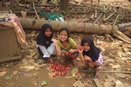 Anak-anak korban bencana di Kabupaten Lebak kembali bermain