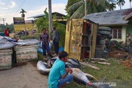 Truk bermuatan ikan terbalik di Aceh Timur