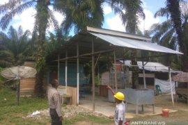 Pekerja kebun kelapa sawit meninggal tersengat listrik di Nagan