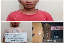 Bawa ganja, dua warga Angkola Muara Tais ditangkap Satresnarkoba Polres Tapsel