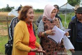 Keturunan Baginda Pipin Siahaan tuding PT Merauke serobot dan kuasai tanah warisan di Siborongborong