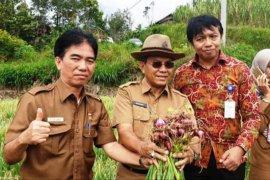 Petani Tanah Datar didorong tidak mengandalkan satu jenis tanaman