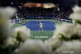 Halep raih juara karier WTA ke-20