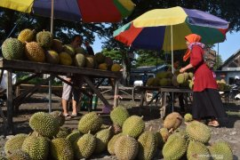 Penjual musiman durian Madiun