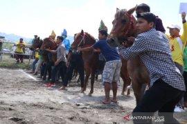 371 kuda pacu ramaikan lomba pacuan kuda HUT Takengon