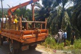 Rombongan mahasiswa UIN Ar-Raniry alami kecelakaan, satu meninggal