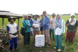 Mukomuko batal beli pestisida untuk atasi hama