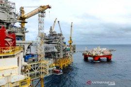 Harga minyak naik, Brent dekati 50 dolar dipicu harapan stimulus AS