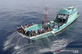 Tuna Indonesia raih ekolabel MSC lagi,  pengakuan dunia