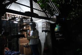 Densus 88 Polri kembali tangkap seorang terduga teroris di Surabaya