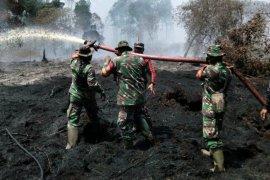 Lima hektare lahan di Kecamatan Teluk Belengkong terbakar