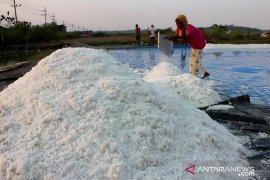 KPPU minta pemerintah wajibkan importir serahkan data penggunaan impor garam