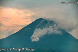 Gunung Merapi dua kali meluncurkan awan panas guguran hingga 1,8 km