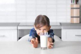 Bolehkah beri banyak susu pada anak yang mogok makan?