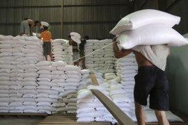 Bulog janji serap 50.000 ton beras petani  Sumsel hingga Mei 2021