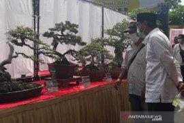 Ratusan peserta ramaikan pameran bonsai