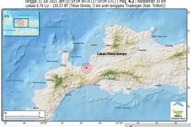 Gempa 4.2 magnitudo  guncang Kabupaten Tolitoli