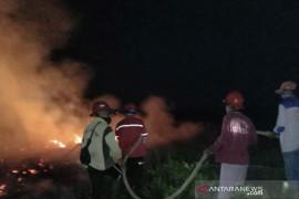 Arara Abadi dan TNI/Polri padamkan karhutla di SM Giam Siak Kecil