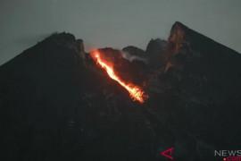 Gunung Merapi meluncurkan guguran lava pijar 15 kali
