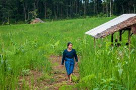 Baduy women farm for tradition sake, loyalty