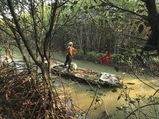 Seorang aktivis lingkungan dari kelompok Jaka Kencana melakukan patroli di kawasan hutan mangrove Pabean, Indramayu, Jawa Barat, Senin (17/9). Sejumlah LSM lingkungan hidup menuntut pemkab Indramayu untuk melakukan pemulihan kawasan mangrove yang rusak akibat kegiatan normalisasi sungai. ANTARA JABAR/Dedhez Anggara/agr/18.