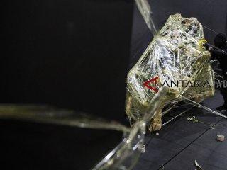 Seniman Deni Ramdani memasang lakban pada akar pohon saat penampilan kolaborasi seni ikebana dan seni kontemporer Radix di sela-sela pameran [not] ARTOfficial [?] : out of track di Lawangwangi Creative Space, Bandung, Jawa Barat, Sabtu (3/11/2018). Pagelaran seni tersebut bercerita tentang akar sebagai simbol sebuah dasar-dasar, hal fundamental atau pangkal dari sesuatu. ANTARA JABAR/M Agung Rajasa/agr.