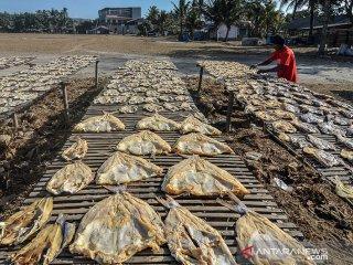 Perajin menjemur ikan asin jambal roti di Lapang Katapang Doyong, Kabupaten Pangandaran, Jawa Barat, Sabtu (24/8/2019). Perajin mampu memproduksi ikan asin jambal roti sebanyak satu kuintal dengan harga Rp 100 ribu hingga Rp 150 ribu per kilogram yang dipasarkan keberbagai daerah di Jawa Tengah dan Jabar. ANTARA JABAR/Adeng Bustomi/agr