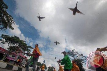 Ajang pacu itiak di Payakumbuh masuk kalender wisata Sumbar