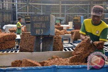 Ekspor karet Sumut turun 10, 80 persen