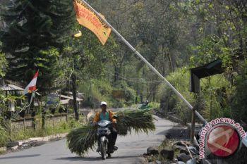 Letusan Gunung Agung jadi momentum kembali ke pertanian