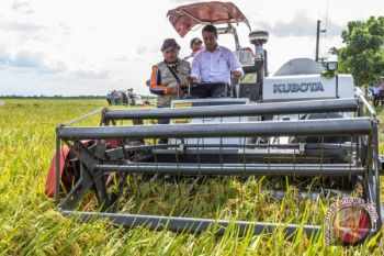 Mentan: pertanian modern kunci daya saing pertanian