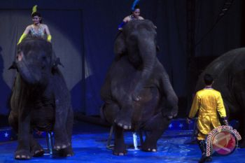 Penampilan Sirkus Rusia