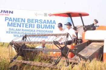 """Dua BUMN selamatkan petani dari """"cengkeraman"""" Tengkulak"""