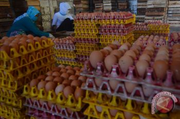 Harga telur dan ayam ras mulai naik di Malang