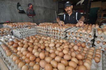 Harga telur ayam di Cianjur masih tinggi
