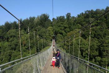 Wisata Jembatan Gantung Gede Pangrango Sukabumi