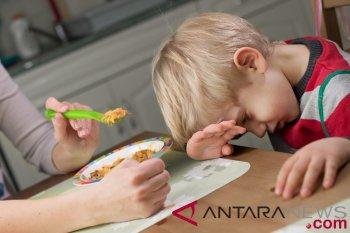 Dokter anak: Pilih-pilih makanan itu wajar asal terkontrol