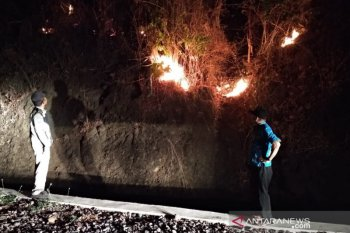 Kebakaran landa ratusan hektare lahan perkebunan di Kampung Legok Sukabumi