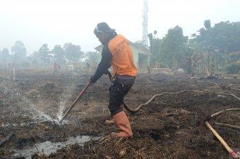 Redam kebakaran lahan di Banjarbaru dengan suntik gambut