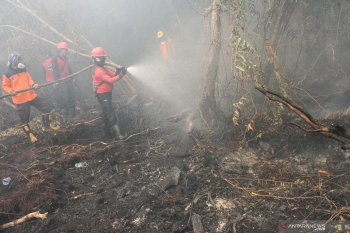 Karhutla Riau, Satgas belum butuh bantuan personel kiriman Anies