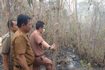 Bupati Syahirsah  tinjau Karhutla di Tahura Sultan Thaha Batanghari