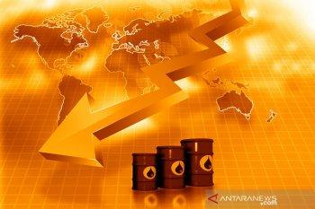 Korban tewas corona meningkat, minyak jatuh ke posisi terendah 3 bulan