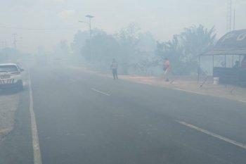 Kebakaran hebat  di Jalintim Mesuji Lampung  Perbatasan Provinsi Sumatera Selatan