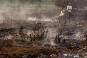 Jumlah titik panas melonjak, Pekanbaru kembali diselimuti kabut asap