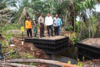 120 ribu hektare gambut jadi PR restorasi BRG pada 2020