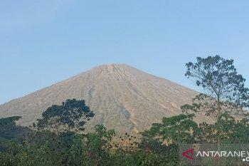 Kebakaran hutan, Gunung Rinjani Lombok ditutup untuk pendaki