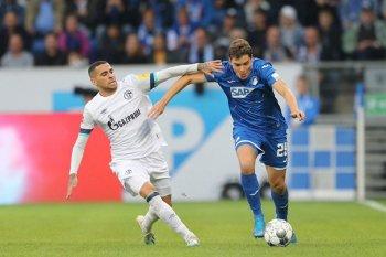 Liga Jerman - Hasil dan Klasemen, Hoffenheim hambat langkah Schalke